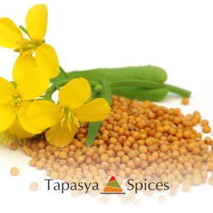 Sarso Pili Mustard Seed Yellow with flower